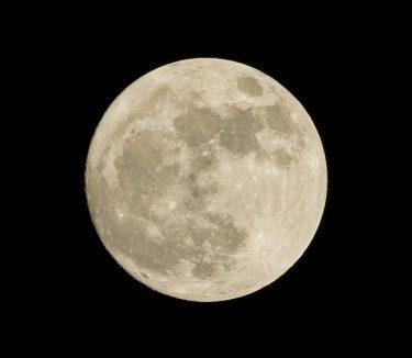 お月見と満月の違い