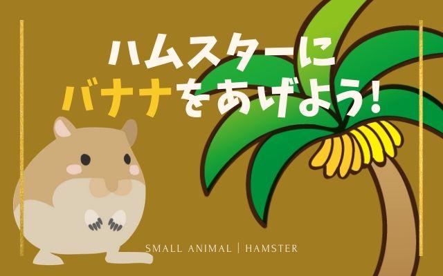 ハムスターにバナナをあげる時に気をつけること画像