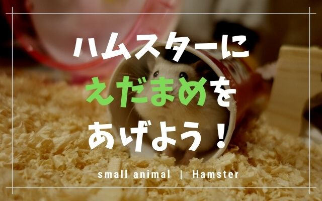 ハムスターは枝豆を食べることができますの画像